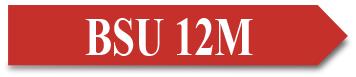 BSU 12M